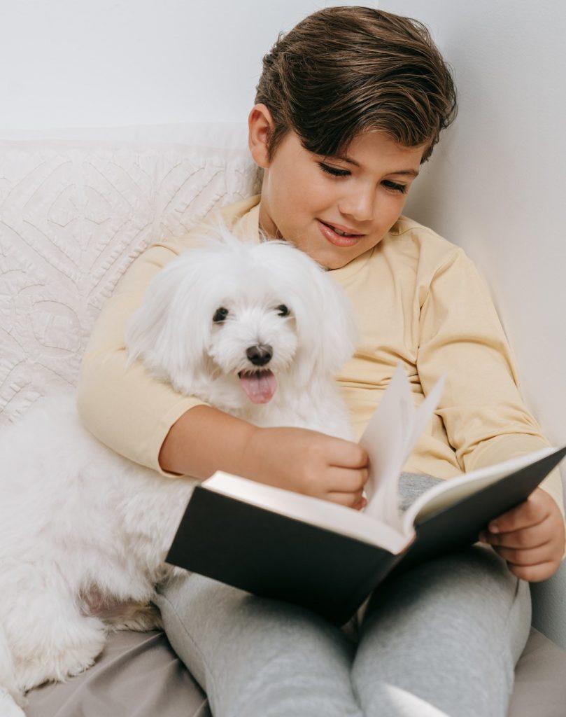 readwrite learner success