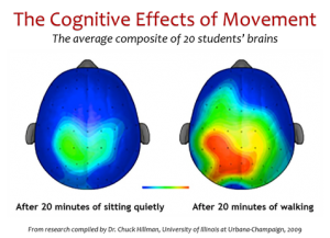 cognitive effects of movement