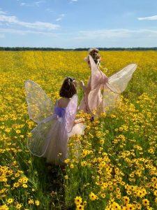 fairies in field